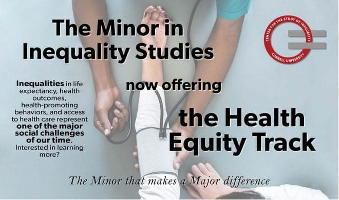 Minor In Inequality Studies Health Equity Track
